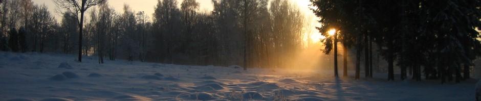 cropped-vinterdag_00891.jpg